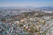 전북대·원광대, 의료용 대마 완전 국산화 나선다