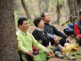 국립산림과학원, '산림치유 항노화 프로그램' 운영