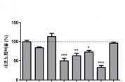 닥나무․노랑느타리버섯 추출물, 피부세포 노화 50% 억제