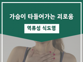 가슴이 타들어가는 괴로움, 역류성 식도염