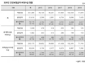 외국인 건보 부정수급 316억원…환수금액 51.7% 그쳐