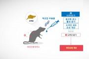 백강잠, 파킨슨병 운동장애 개선 효능 '입증'