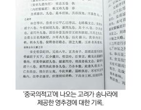 論으로 풀어보는 한국 한의학 (136)