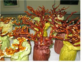 녹각영지버섯, 신경세포 보호 및 항산화 효과 확인