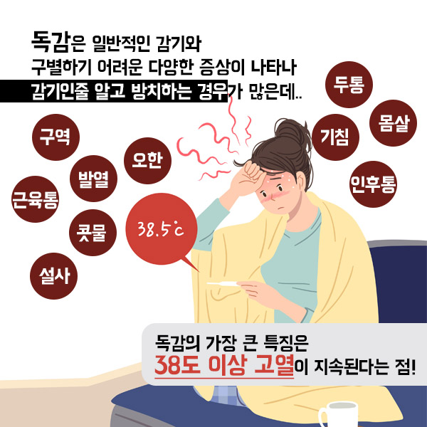 독감 2-3