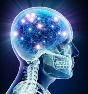 알츠하이머 치매치료후보물질 'KDS-2010' 유효성 규명